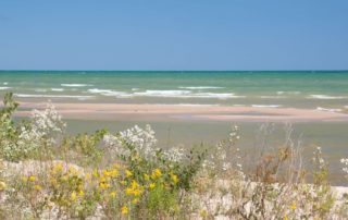Building Community: Freshwater Future - Michigan Home and Lifestyle